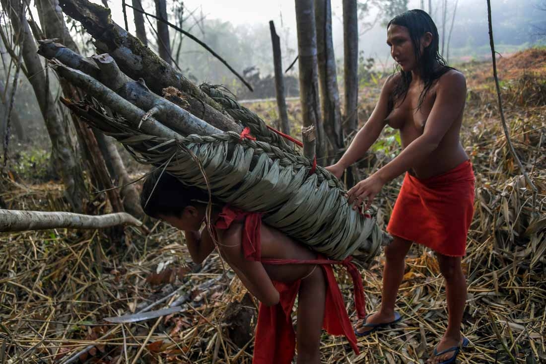 A Waiapi boy and his mother carry wood for a fire pit, at the Manilha village in the Waiapi indigenous reserve in Amapa state in Brazil on October 13, 2017.  When Waiapis walks into the Amazon forest surrounding their village, they do not see trees, but a