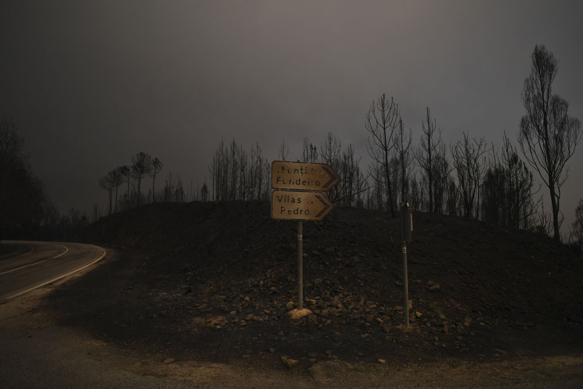 A picture taken on June 18, 2017 shows roadsigns in an area devastated by a wildfire in Figueiro dos Vinhos.