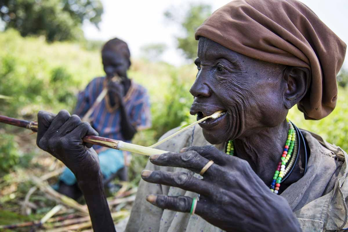 Akech Yai and (background) her granddaughter Abuk Gang (12) eat sorghum canes collected from other cultivators' land which was damaged due to the dry spell, on October 12, 2016 in Aweil.